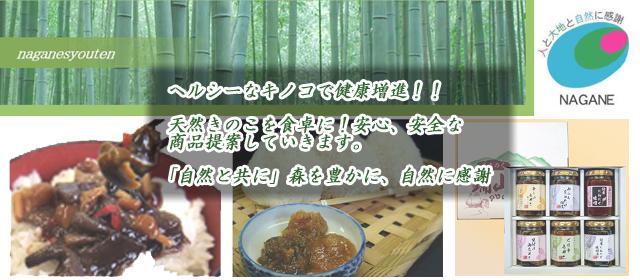岩手県洋野町 長根商店 山の幸 山菜 きのこ ギフト 詰合せ